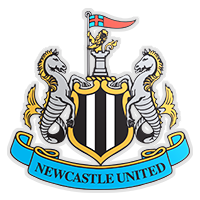 Newcastle henter en ny spiss